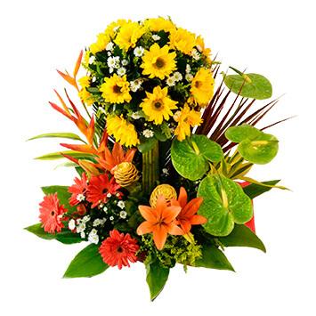 Cmp068 Arreglo Floral Para Cumpleaños Estatus Floristería