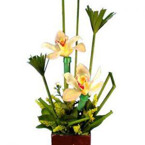 ORQ067 – Arreglo floral de orquídeas