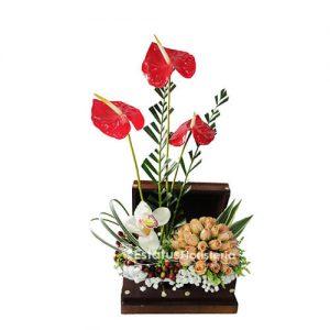 ORQ091 – Orquídeas