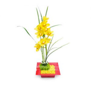 ORQ085 – Arreglo Floral de Orquídeas