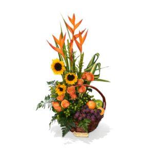 RCP066 – Flores y frutas